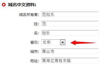 域名中文资料