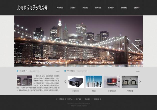 网站案例:上海李氏电子有限公司