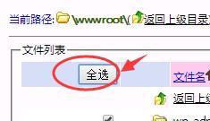 全选wwwroot文件夹文件