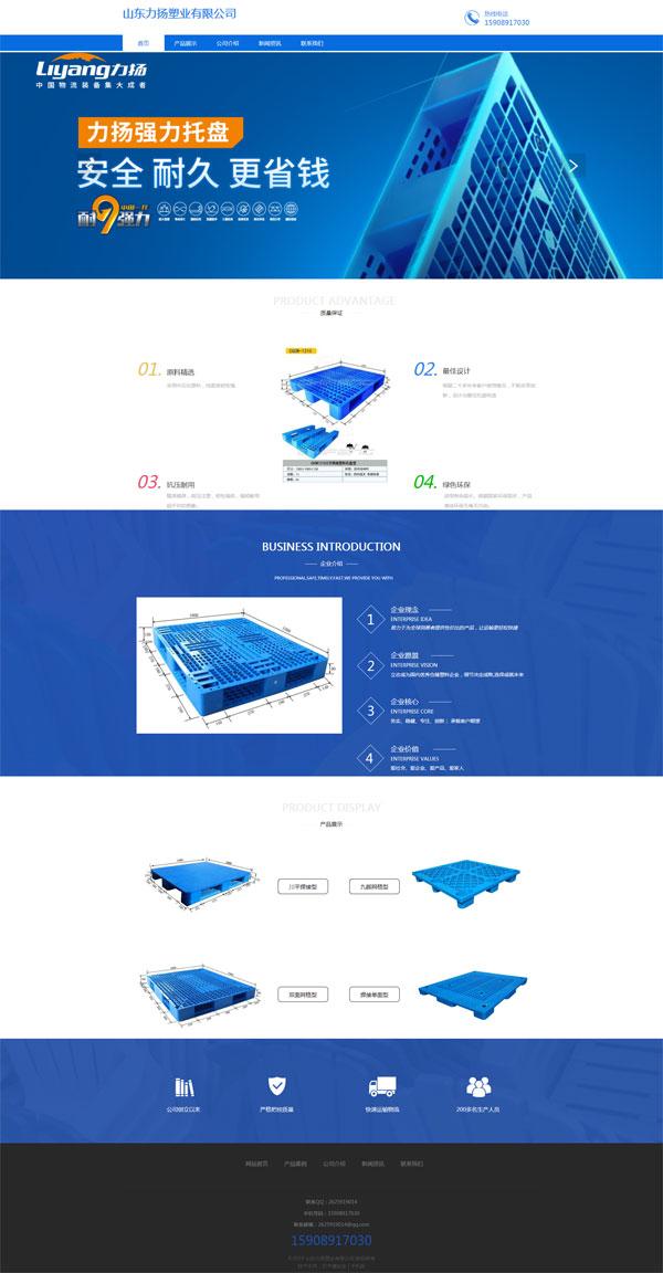 网站案例:山东力扬塑业有限公司