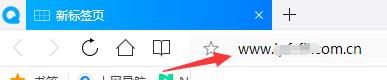 在浏览器地址栏输入网址域名图例