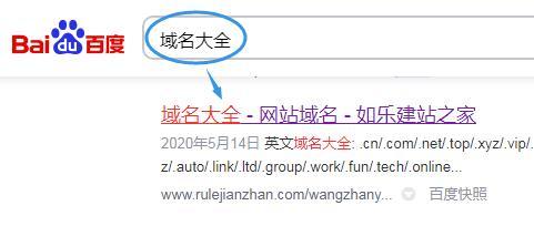 网民搜索域名大全的搜索结果图示